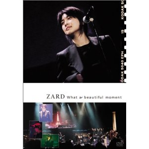坂井泉水 : What a beautiful moment [DVD]